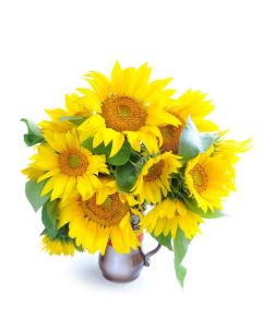Crowning Glory Sunflower Bouquet