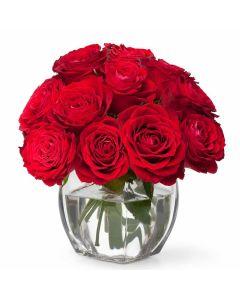 Full of Life Rose Gift