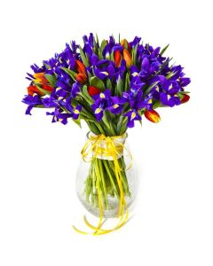 Violet Fantasy Mixed Iris Bouquet