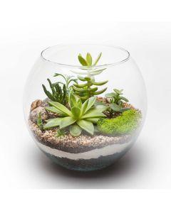 Circle of Life Succulent Terrarium