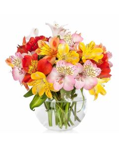 Spring Bloom Peruvian Lily Bouquet