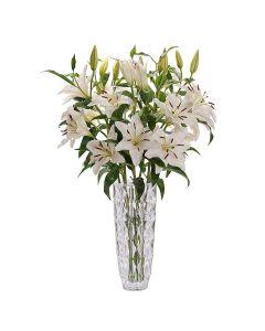 Crisp Snow Peruvian Lily Bouquet