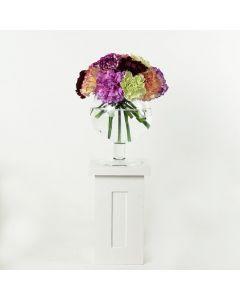 Color-Crazed Carnations Flower Gift