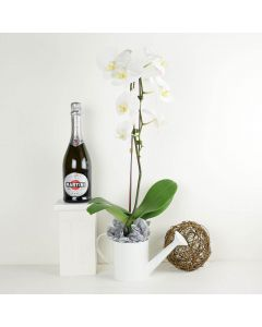 Pure & Simple Flowers & Wine Gift