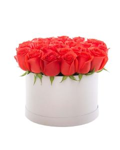 Red Vibrancy Box Rose Set