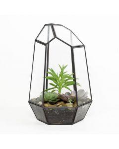 Sitting Pretty Succulent Terrarium