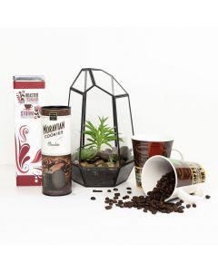 The Perfect Morning Terrarium Gift Set