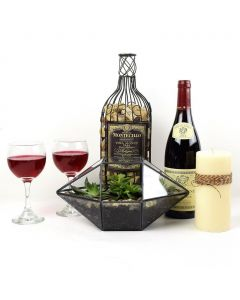 """""""You're Special"""" Plant & Wine Gift"""