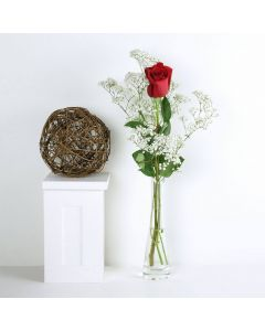 """""""You're The One"""" Rose Gift"""