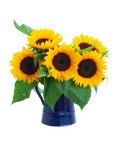 Charming Amber Sunflower Bouquet