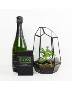 Reasons To Celebrate Plant & Champagne Gift